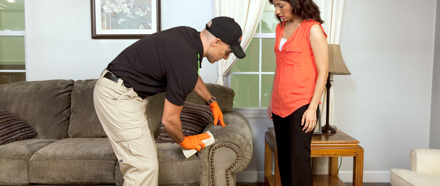 Houston Heights, TX carpet upholstery cleaning