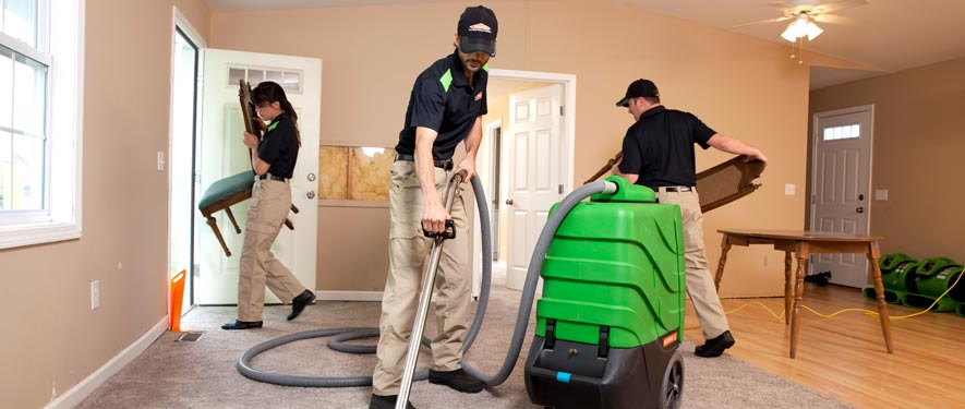 Houston Heights, TX cleaning services